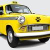 pet-taxi-per-cani-fabriano
